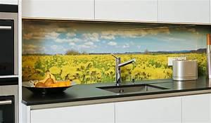 Motive Für Küchenrückwand : k chenr ckwand aus glas k chenr ckw nde glas diy glas ~ Sanjose-hotels-ca.com Haus und Dekorationen