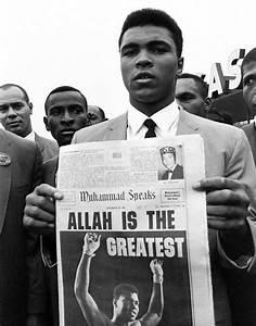 Ali News