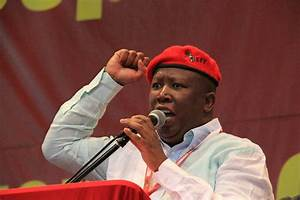 Malema not out of the woods just yet - SA Breaking News