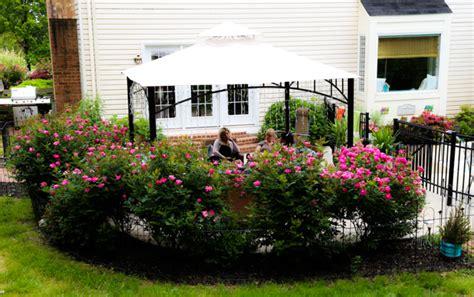 bush garden ideas landscaping ideas around pools landscape stone carroll county md