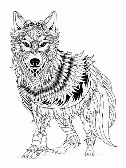 Coloring Pages Wolf Mandala Adult Printable Getcolorings