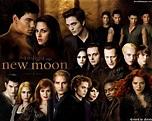 The Twilight Saga New Moon (2009) - Movie HD Wallpapers