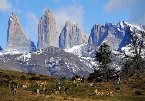 voyages chambres d hotes voyage en estancia argentine et chili circuit en patagonie