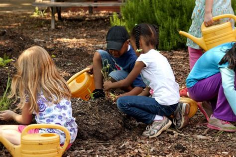 early childhood emotional and social development social 406 | girls gardening