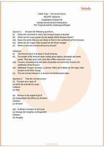 Class 8 History Ncert Guide Solutions