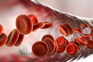 Blood Disorder Types And Symptoms