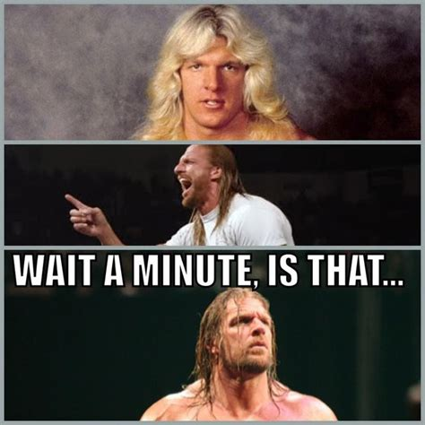 Wwe Memes Funny - 75 best triple h paul levesque images on pinterest wwe