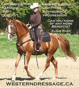 27 best images about Western Dressage on Pinterest ...