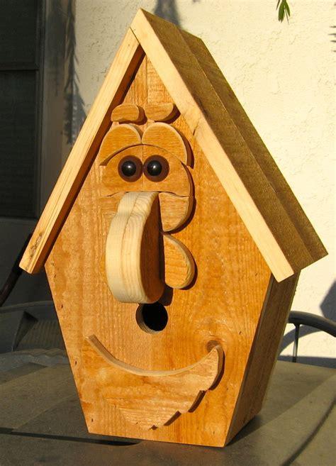 building funny birdhouse   alan