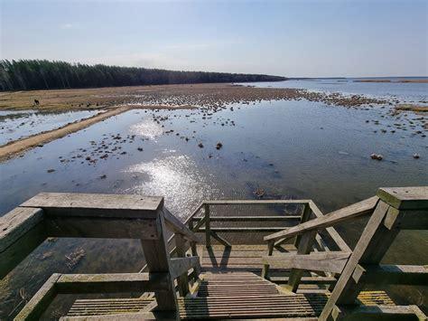 Engures ezera dabas taka (5 km) - TravelFree.lv
