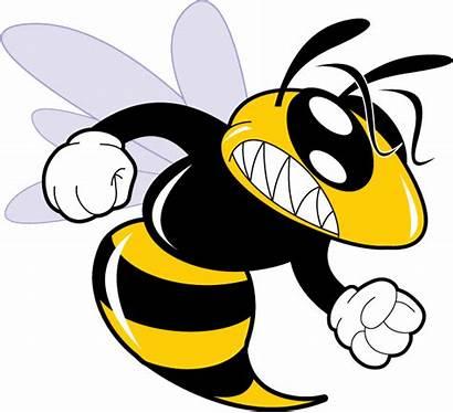 Hornet Clipart Mascot Cartoon