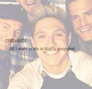 please? | Niall Horan / Harvey | Pinterest | We, Happy ...
