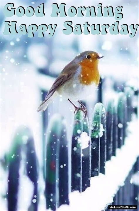 winter good morning happy saturday quote pictures