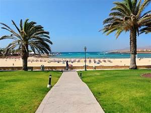 hotel barcelo castillo beach resort fuerteventura insel With katzennetz balkon mit garden beach fuerteventura