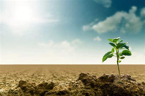 klimawandel und die auswirkungen auf die landwirtschaft bio austria