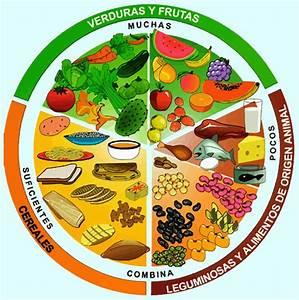 Plato del buen comer Alimentos Infantil Doctor