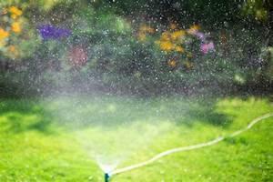 Pflanzen Bewässern Urlaub : garten bew ssern im urlaub 6 tipps zur pflege von rasen co ~ Watch28wear.com Haus und Dekorationen