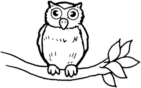 Coloring Owl by Coloring Ville