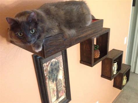 floating cat shelves set of four three floating cat cube shelves and one floating