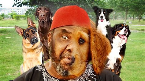 dog meeting pete edochie latest nollywood movies