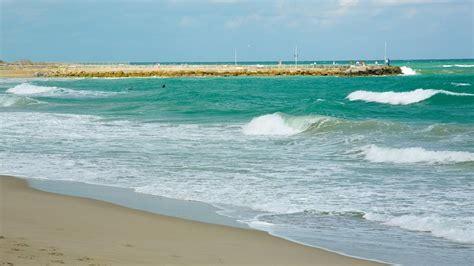 palm beach cabinet co jupiter fl ジュピター ビーチ フォート ローダーデール旅行 エクスペディア