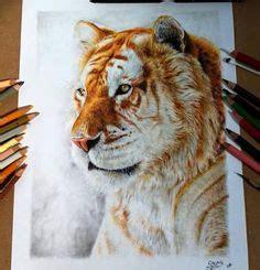 Beste Afbeeldingen Van Drawing Animals