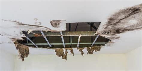 roof repair des moines ia downs pest control