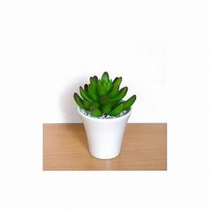 Plante Grasse Artificielle : plante grasse artificielle crassula en pot plantes ~ Teatrodelosmanantiales.com Idées de Décoration
