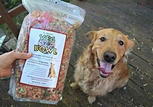 dr harveys dog food review