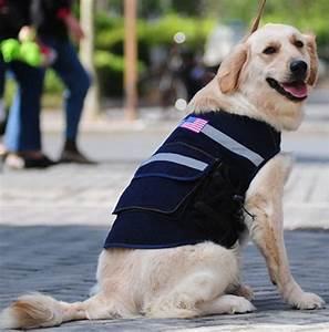 Harnais Gros Chien : sac dos pour chien sac dos en jean pour grand chien sac ~ Nature-et-papiers.com Idées de Décoration