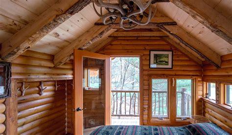 moose meadow lodge treehouse