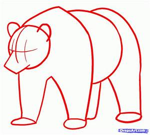 Step 10. How to Draw Grizzly Bears