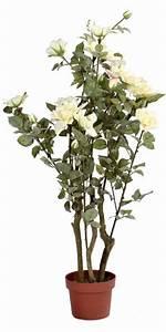 Pot Pour Plante Intérieur : plante artificielle rosier en pot fleurs pour int rieur cm blanc ~ Melissatoandfro.com Idées de Décoration