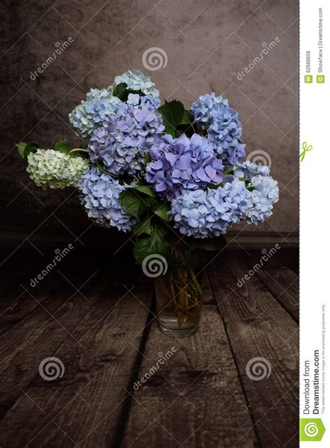 floor l colorful hydrangeas in vase springtime stock photo image 62666656