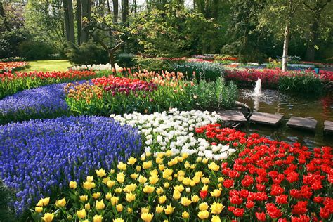 flower beds 25 magical flower bed ideas and designs