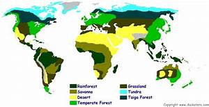 Map Of The World Biomes And Explanation Of Each Biome