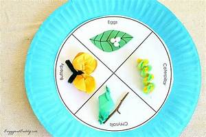 20+ Caterpillar and Butterfly Crafts for Kids - Buggy and ...