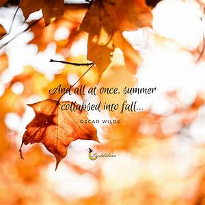 20 Beautiful Autumn Quotes That Will Make You Fall In Love ...
