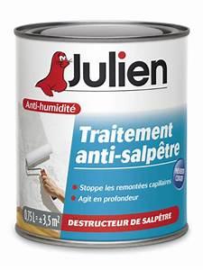 Traitement Anti Humidité : traitement anti salp tre peintures julien ~ Dallasstarsshop.com Idées de Décoration