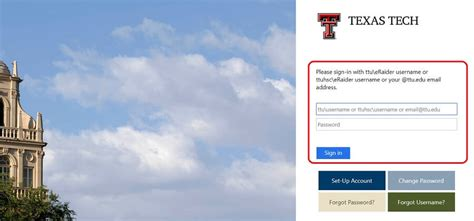 blackboard texas tech university login  sign  guide