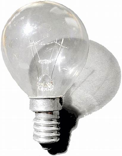 Bulb Clear Commons Wikimedia Higher Resolution
