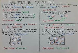 Multiplying Monomials And Polynomials Worksheet Answer Key