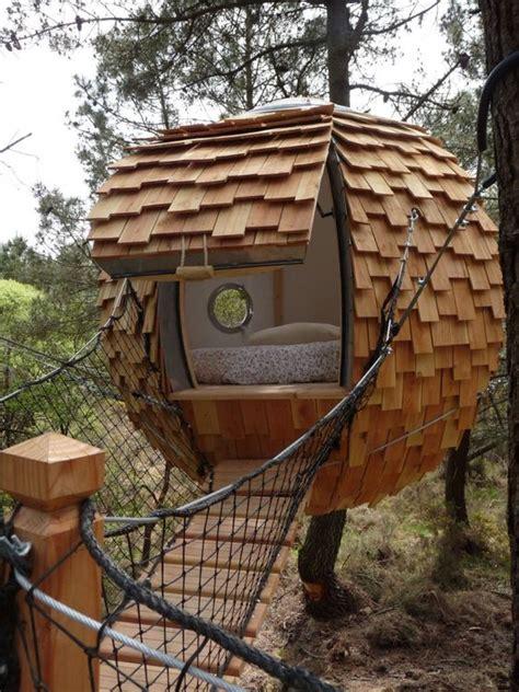 chambre bulle dans la nature insolite une bulle pour dormir dans les arbres small