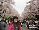 Andy與Zoe的旅行紀錄: 東京賞櫻 - 上野公園迷人的櫻花祭