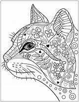 Coloring Cat Mandala Pages Cats Printable Getcolorings sketch template