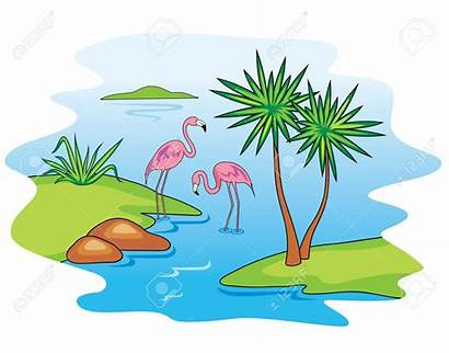 Clipart Lagoon Lake Clip Flamingo Pink Panda