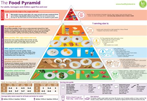food pyramid   story real healthy life style