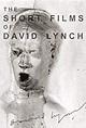 The Short Films of David Lynch (Video 2002) - IMDb