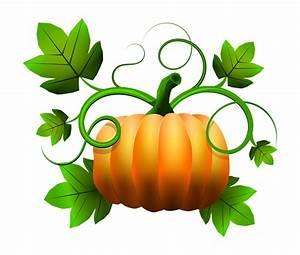 Pumpkin clipart november - Pencil and in color pumpkin ...