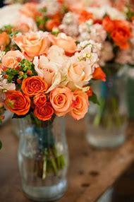 Peach and Orange Roses